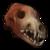 Волчий череп (Wolf skull)